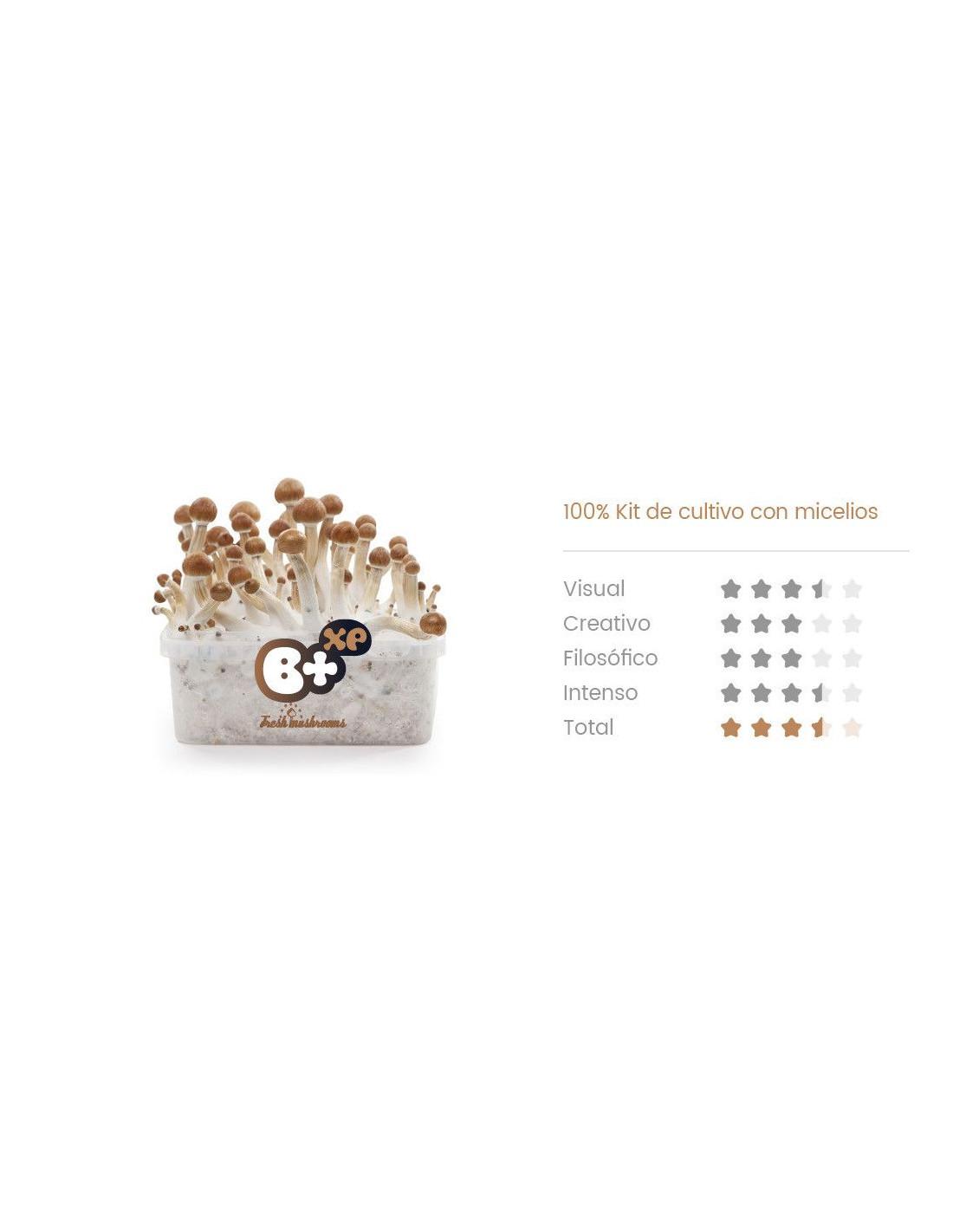 https://mycotrop.com/854-thickbox_default/b-champignons-magiques-growkit.jpg
