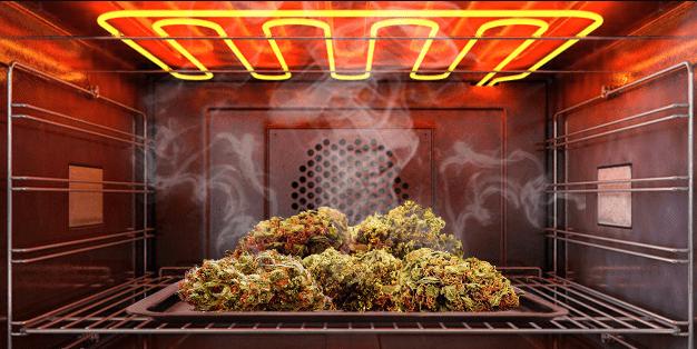 Comment décarboxyler les fleurs de cannabis?